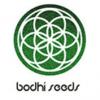 bodhi-seeds
